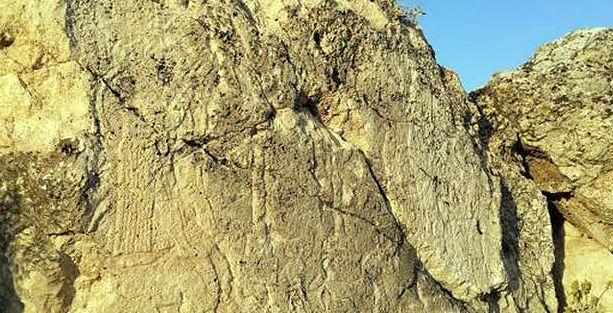 Ergani'de 2900 yıllık kaya kabartması