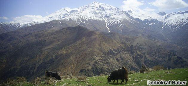 Ermeniler Mereto Dağı'na tırmandı