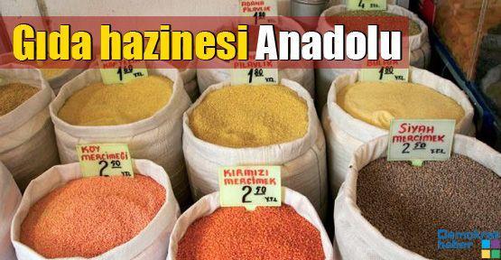 Gıda hazinesi Anadolu