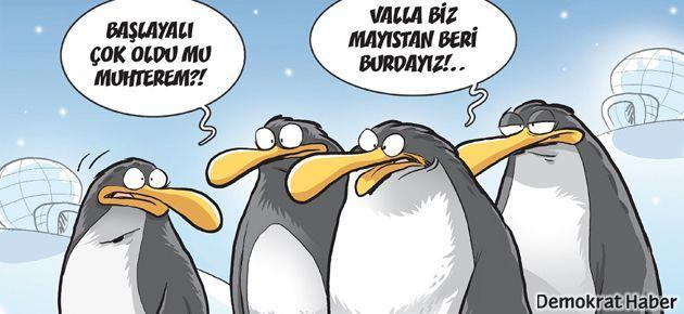 Gırgır'ın kapağını penguen bastı!