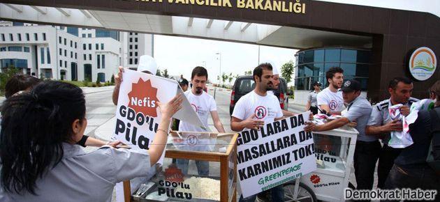 Greenpeace'in 'nefis GDO'lu pilavı'nı yemediler
