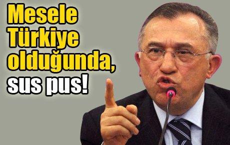 Halis: Mesele Türkiye olduğunda, sus pus!