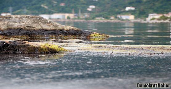 Hidrosülfür, balık ekosistemini öldürüyor