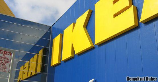 IKEA'nın orman katliamına karşı imza kampanyası