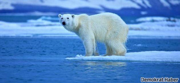 'İklim değişikliği inkâr ediliyor'
