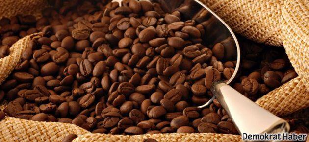 Kafein ergenlikte beyin gelişimini engelliyor