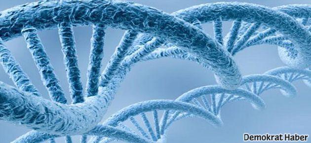 Kansere nokta atışı: Nanotaşıyıcılar