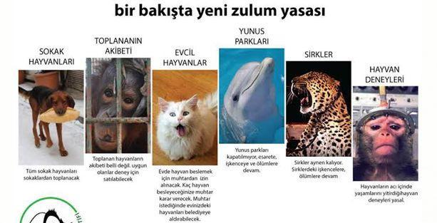 Komisyon hayvan haklarını değil, insan menfaatini konuştu