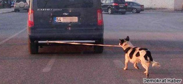 Köpeği arabanın arkasına bağlayıp sürükledi