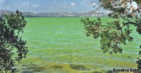 Küçükçekmece Gölü kirlilikten yeşerdi