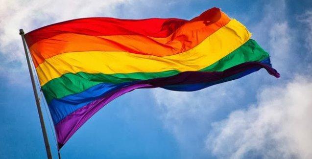 LGBTİ'ler: Devlet, evlenmeyen herkesi doğrudan dışlıyor