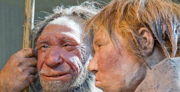 Neandertaller bitki de yiyordu