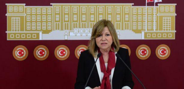 Nur Serter: CHP ve MHP'nin adayı Deniz Baykal olmalı