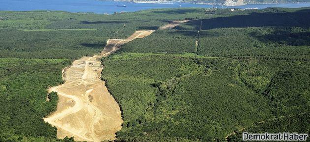 Ormanlık alanlar enerji için talan edilecek