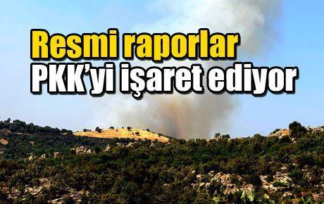Resmi raporlar PKK'yi işaret ediyor