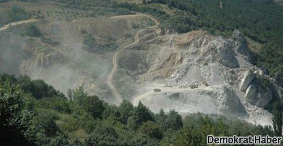 Sakarya'daki doğa katliamı saniye saniye görüntülendi