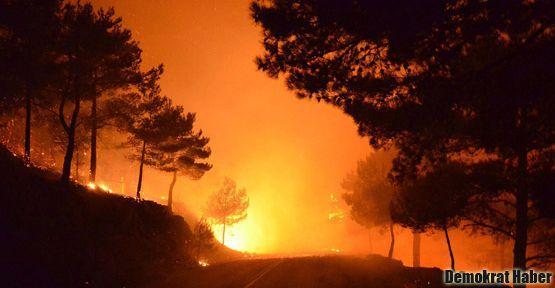 Sakız Adası'nda büyük yangın