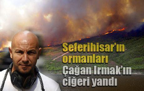 Seferihisar'ın ormanları Çağan Irmak'ın ciğeri yandı