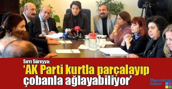 Sırrı Süreyya: 'AK Parti kurtla parçalayıp çobanla ağlayabiliyor'
