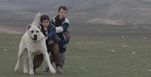 'Sivas' 71. Venedik Film Festivali'nde yarışacak
