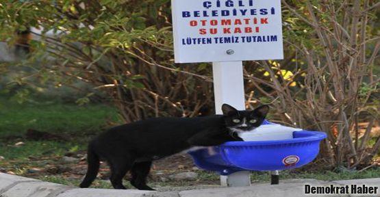 Sokak hayvanlarına otomatik suluk