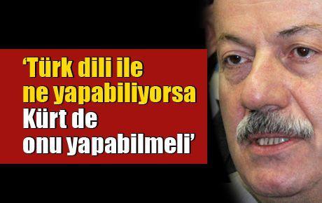 'Türk, dili ile ne yapabiliyorsa, Kürt de onu yapabilmeli'