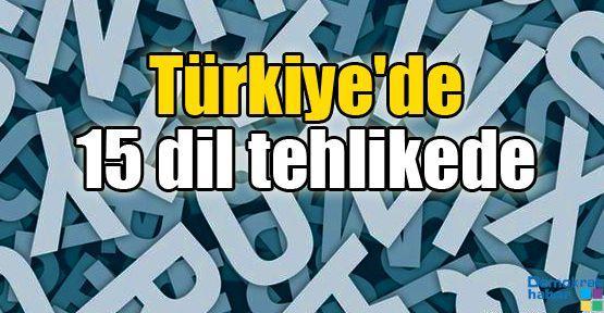 Türkiye'de 15 dil tehlikede