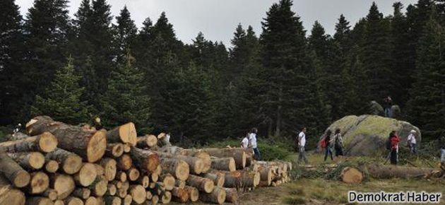 Uludağ'daki teleferik projesine durdurma kararı