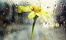Meteoroloji uyarı: Kuvvetli yağış bekleniyor
