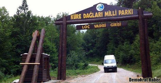 Valla kanyonunda Diken özeği kavurması yer misiniz?