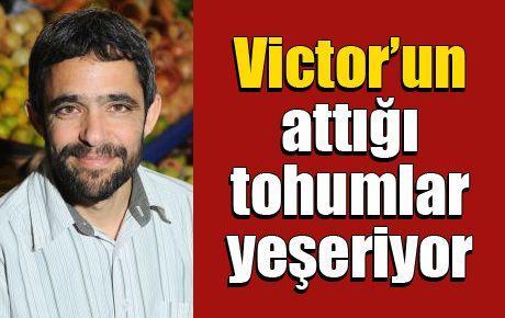 Victor'un attığı tohumlar yeşeriyor