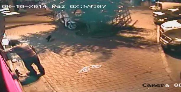 Yavru kedileri sokak ortasında tekmeleyerek katletti!