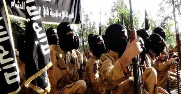 Yrd. Doç. Dr.'un 3 oğlu birden IŞİD'e katıldı!