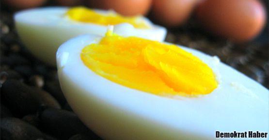 Yumurta tartışması